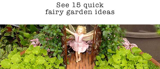 M Nursery In California Has Been The Home Of Fairy Gardeniniature Gardens Since 2001 Today It Is A Top Trend Gardening
