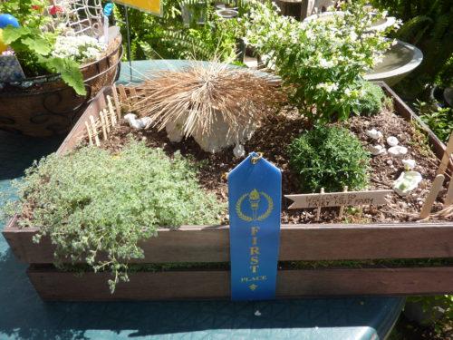 1st place winner - childrens division Amelia Schroeder