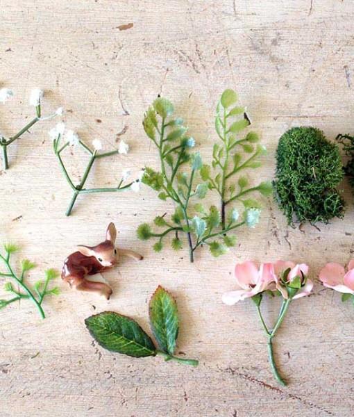 Miniature fairy garden plant kit fairy garden expert Fairy garden plants