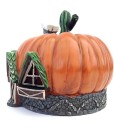 Fairy pumpkin house