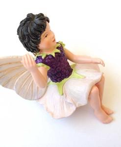 Blackberry fairy