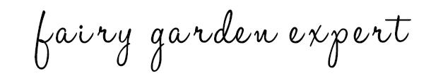 Fairy Garden Expert