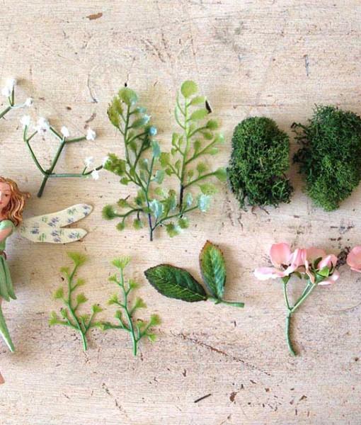 fairygardenminiatureplants