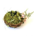 fairy garden nest