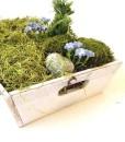fairy garden tray