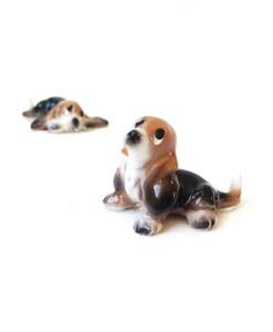 Miniature Basset Hound